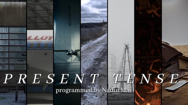 Nadin Mai introduces Present Tense