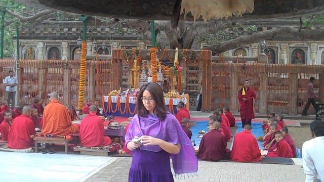 Darjeeling to Bodhgaya to Varanasi