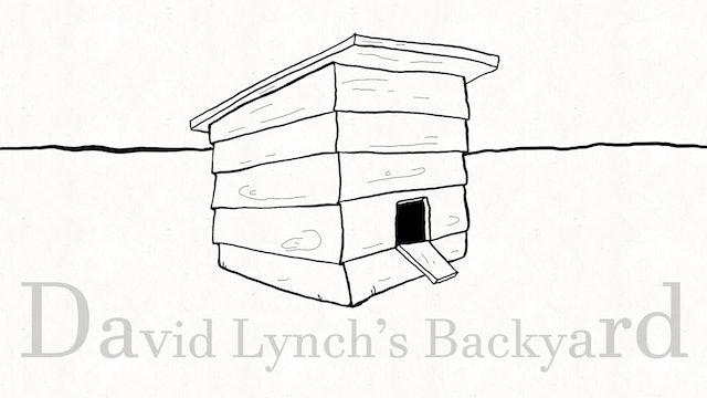 David Lynch's Backyard