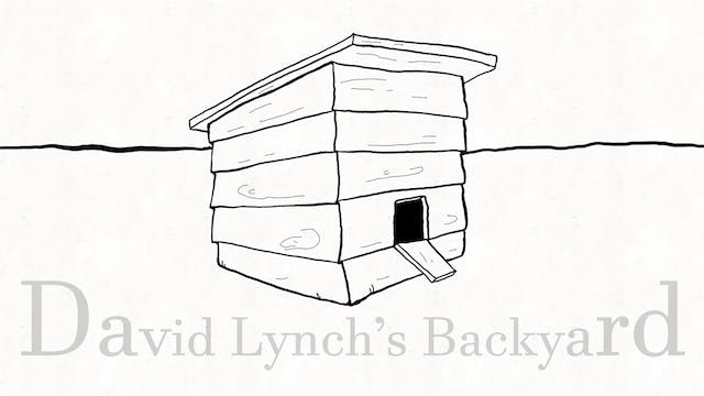 David Lynch's Backyard