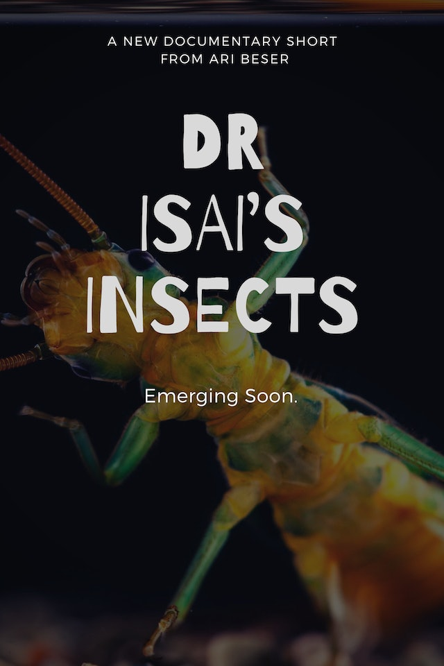 Dr. Isais Insects