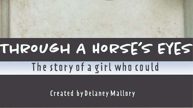 Through A Horse's Eyes