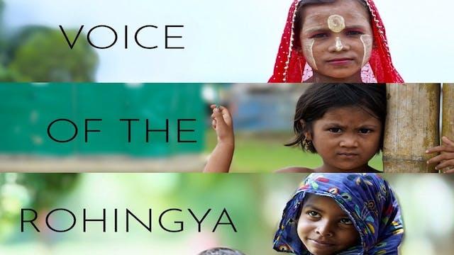 Voice of The Rohingya
