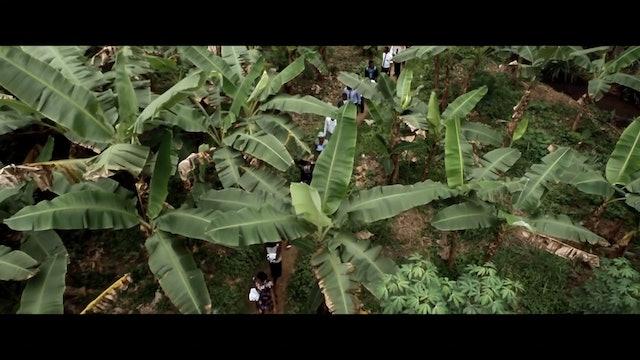 Freetown_BMG_Master (ST & 5.1)-Cinedigm-H.264-1080-30