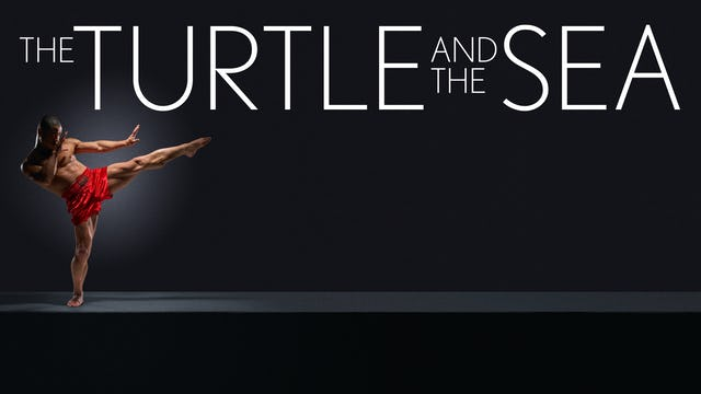 Turtle and the Sea