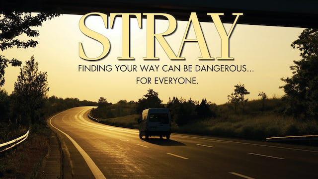 Stray Movie