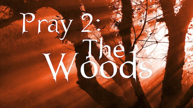 Pray 2: The Woods