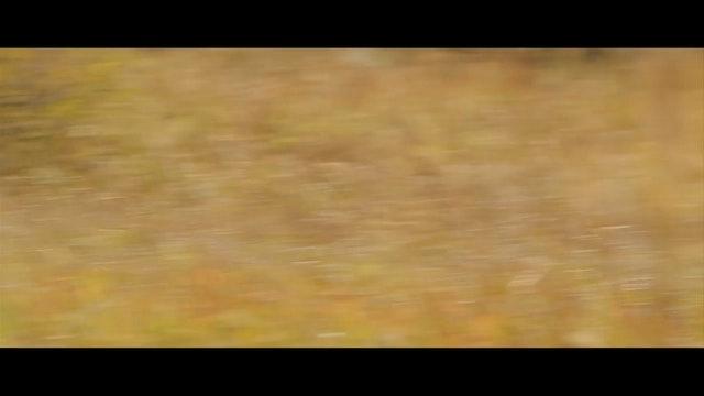 Druid Peak: 30 second clip.