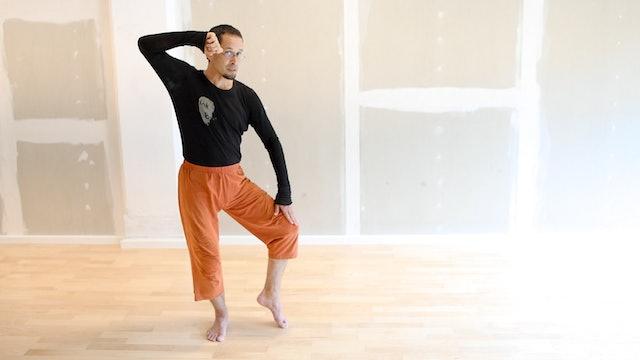 Internal Gong Fu 1: Gong Fu Basic Set