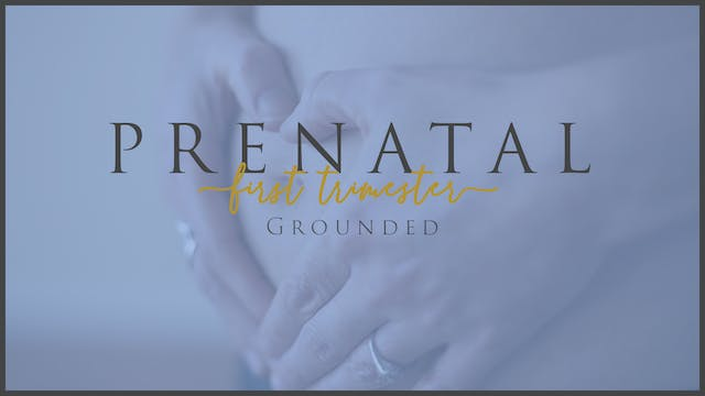 Grounded (1st Trimester - 4)