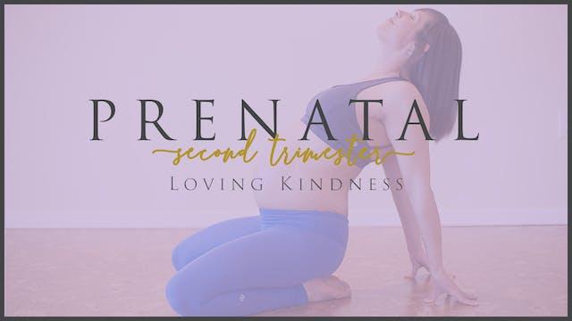 Loving Kindness (2nd Trimester -1)