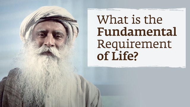 What is the Fundamental Requirement of Life?