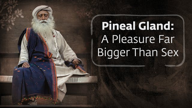 Pineal Gland - A Pleasure Far Bigger ...