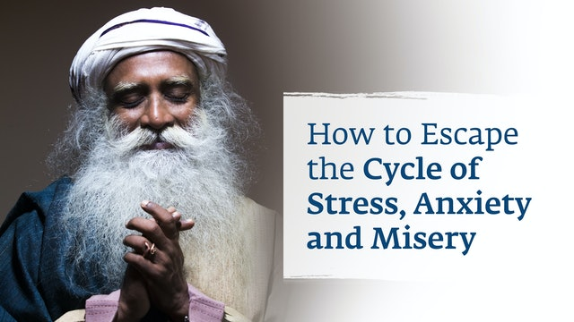 How to Escape the Cycle of Stress, Anxiety & Misery