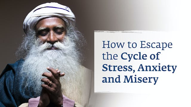 How to Escape the Cycle of Stress, An...
