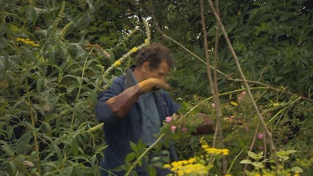 Gardeners' World | Flamborough Cliffs