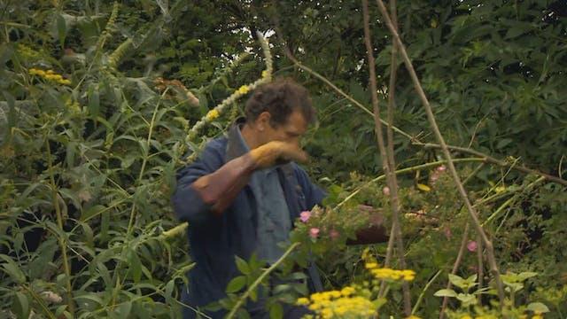 Gardeners' World | Flamborough Cliffs