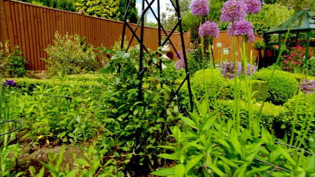 Love Your Garden | The Planting Paradise