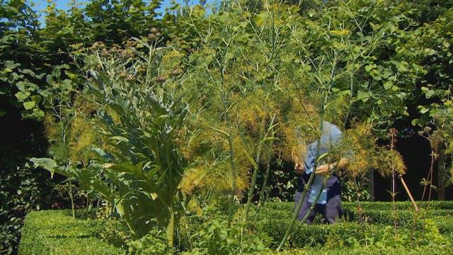 Gardeners' World | Exbury Gardens