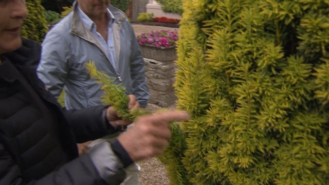 Greatest Gardens - Season 1 Episode 2