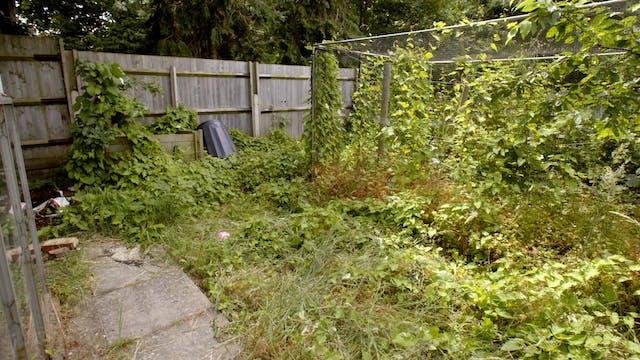 The Autistic Gardener - The Neighbour...