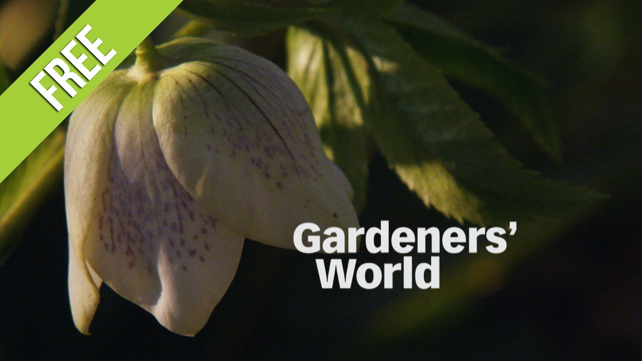 Gardeners' World - Free Episodes