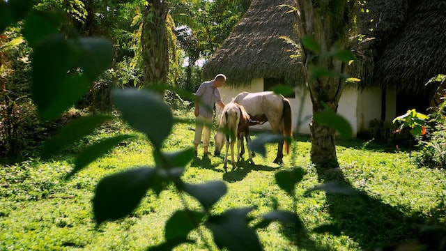 Kevin McCloud's Escape to the Wild - Belize