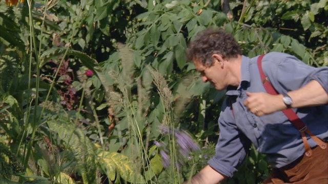 Gardeners' World | Thorp Perrow Arboretum