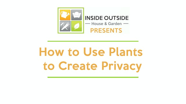 How to Use Plants to Create Privacy