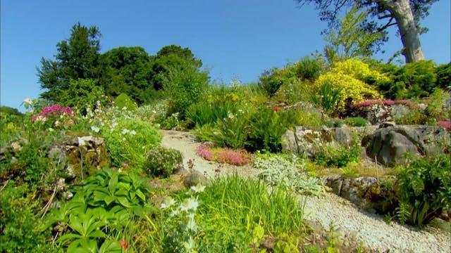 Garden Rescue | Wedmore