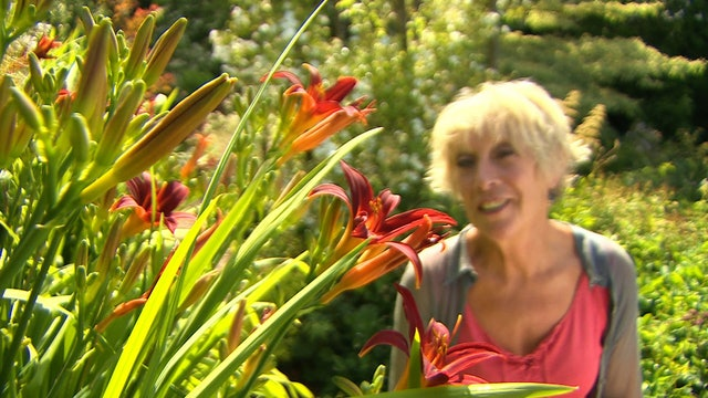 Gardeners' World - Seed