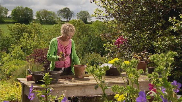 Gardeners' World | Hampshire