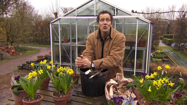 Gardeners' World - Monkshood