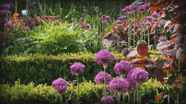 Gardeners' World | Mount Edgcumbe