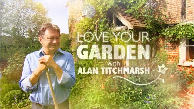 Love Your Garden   The Woodland Garden