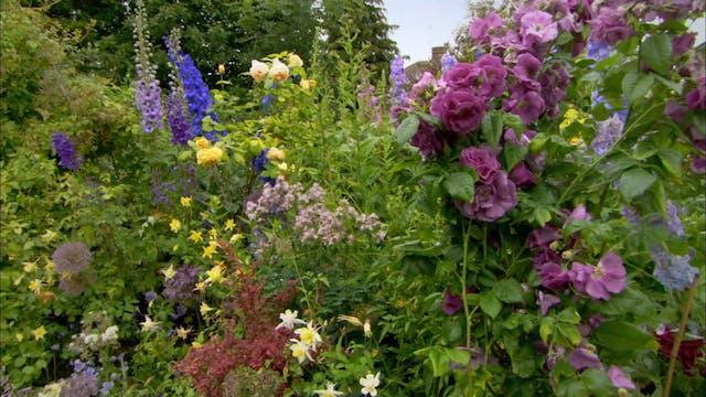 Love Your Garden | The Rose Garden
