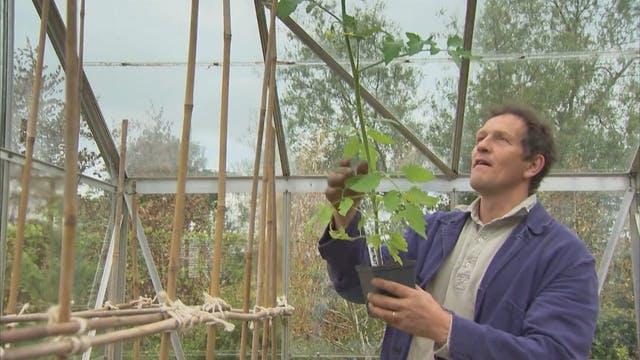 Gardeners' World | RHS Wisley