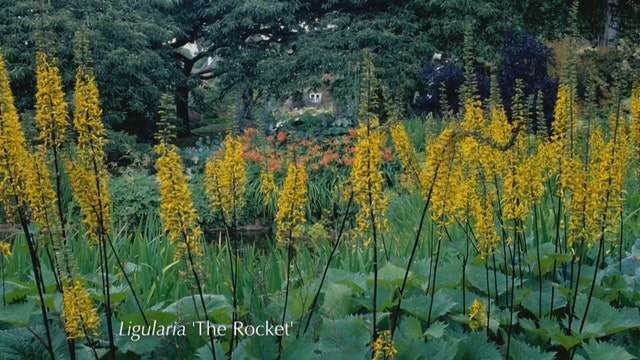 Gardeners' World | Malvern Spring Gardening Show