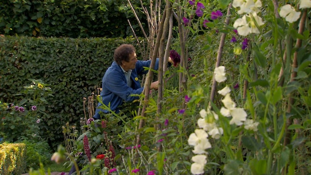 Gardeners' World - Cuttings