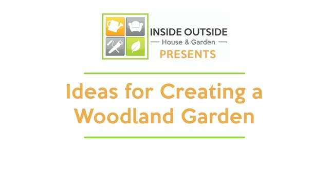 Ideas for Creating a Woodland Garden