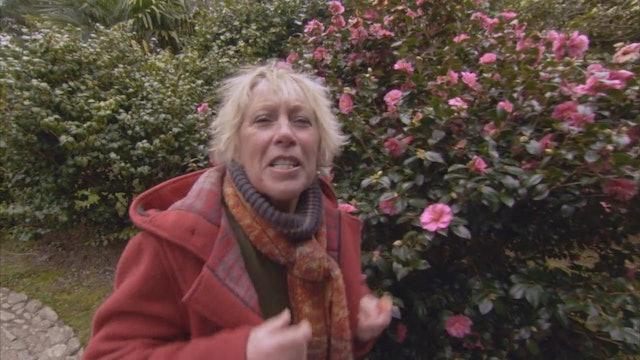 Gardeners' World | Glendurgan Garden