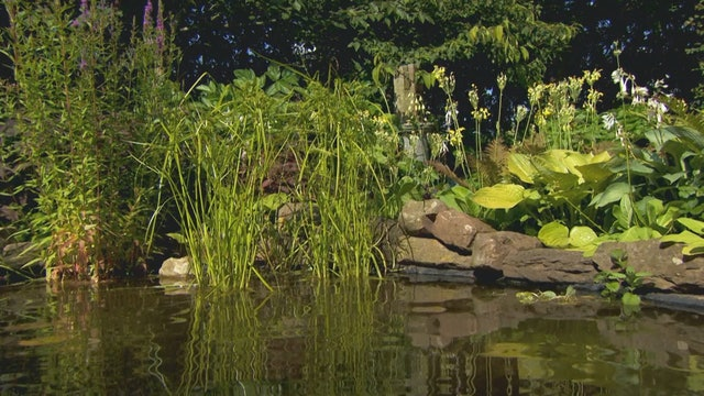 Gardeners' World | South Yorkshire