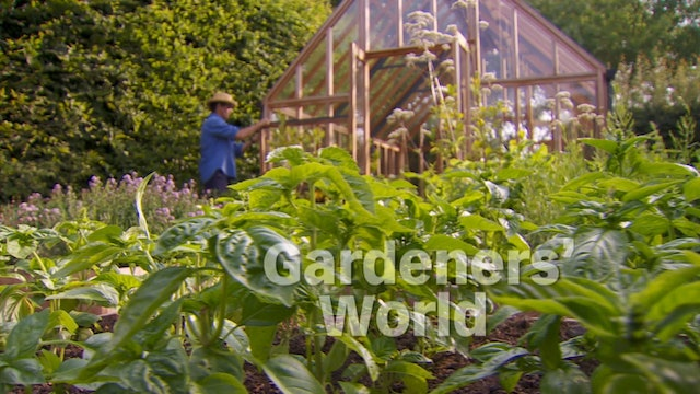 Gardeners' World - Greenhouse