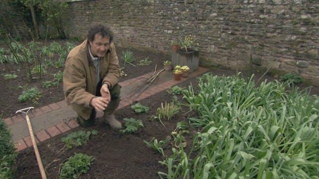 Gardeners' World   The Gibberd Garden