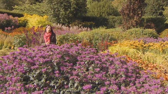 Gardeners' World | Bretherton