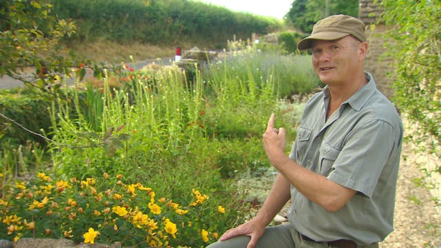 Gardeners' World - Balance