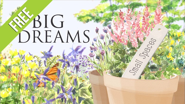 Big Dreams Small Spaces - Free Episodes