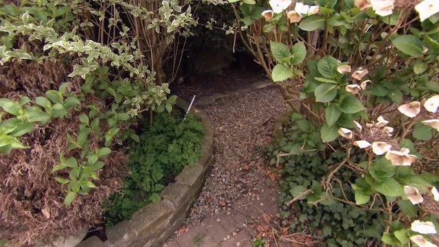 Garden Rescue | Bolton