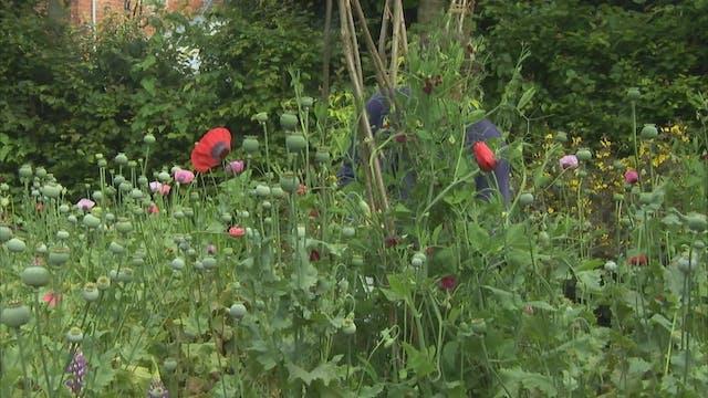Gardeners' World | Abbotsbury Gardens