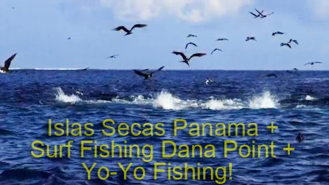 Islas Secas Panama + Yo-Yo Series + Surf Fishing Dana Point TRT 118:00